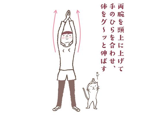 「今日はネコの日!」美ボディをつくる1日1ポーズストレッチ